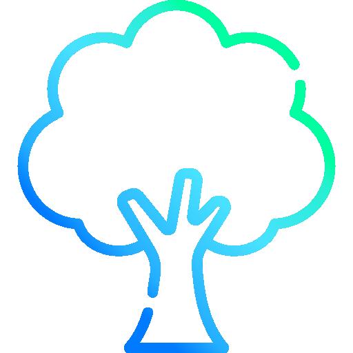 Nachhaltigkeit Baum. Focus Agency Webdesign in Bern